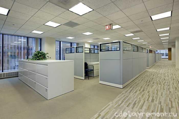 Простое оформление офисного помещения