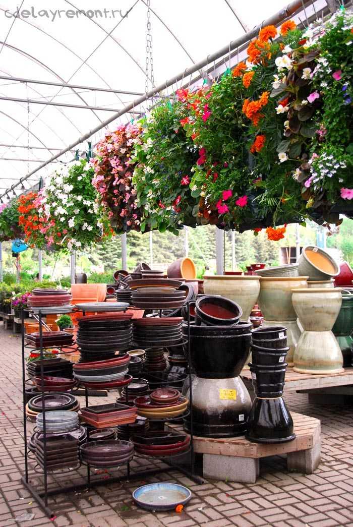 Оформление магазина цветов